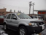 2006 Silver Metallic Ford Escape XLT V6 4WD #57272212