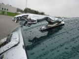 Jaguar XJ 1985 Badges and Logos