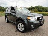 2009 Sterling Grey Metallic Ford Escape XLT V6 #57271338