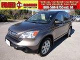 2009 Urban Titanium Metallic Honda CR-V EX #57272133