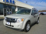 2009 Light Sage Metallic Ford Escape XLT V6 4WD #57271723