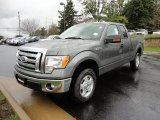 2011 Sterling Grey Metallic Ford F150 XLT SuperCab 4x4 #57271233