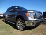 2011 Sterling Grey Metallic Ford F150 XLT SuperCrew #57354858