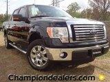 2011 Ebony Black Ford F150 XLT SuperCrew #57354857