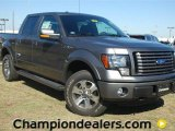 2011 Sterling Grey Metallic Ford F150 FX4 SuperCrew 4x4 #57354855