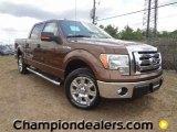 2011 Golden Bronze Metallic Ford F150 XLT SuperCrew #57354853