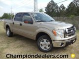 2011 Pale Adobe Metallic Ford F150 XLT SuperCrew #57354846
