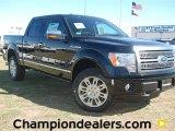 2011 Ebony Black Ford F150 Platinum SuperCrew 4x4 #57354836