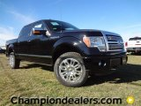 2011 Ebony Black Ford F150 Platinum SuperCrew 4x4 #57354835
