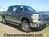 2011 Sterling Grey Metallic Ford F150 XLT SuperCrew 4x4 #57354822