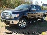 2011 Ebony Black Ford F150 XLT SuperCrew 4x4 #57354814