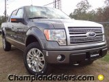 2011 Sterling Grey Metallic Ford F150 Platinum SuperCrew 4x4 #57354807