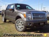 2011 Sterling Grey Metallic Ford F150 Platinum SuperCrew 4x4 #57354806