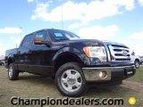 2011 Ebony Black Ford F150 XLT SuperCrew #57354801