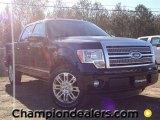 2011 Ebony Black Ford F150 Platinum SuperCrew #57354782