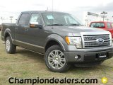 2011 Sterling Grey Metallic Ford F150 Platinum SuperCrew #57354781