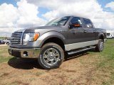 2011 Sterling Grey Metallic Ford F150 XLT SuperCrew 4x4 #57354777