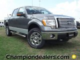 2011 Sterling Grey Metallic Ford F150 XLT SuperCrew 4x4 #57354776