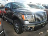 2011 Sterling Grey Metallic Ford F150 XLT SuperCrew #57354775