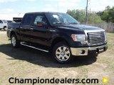 2011 Ebony Black Ford F150 XLT SuperCrew #57354773