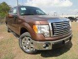 2011 Golden Bronze Metallic Ford F150 XLT SuperCrew #57354772