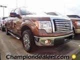 2011 Golden Bronze Metallic Ford F150 XLT SuperCrew #57354770