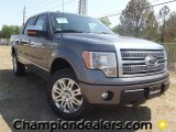 2011 Sterling Grey Metallic Ford F150 Platinum SuperCrew 4x4 #57354764