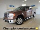 2011 Golden Bronze Metallic Ford F150 XLT SuperCrew #57354718