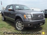 2011 Sterling Grey Metallic Ford F150 Platinum SuperCrew 4x4 #57354716