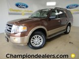 2011 Golden Bronze Metallic Ford Expedition XLT #57354710