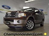 2011 Golden Bronze Metallic Ford Expedition XLT #57354690