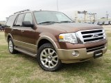 2011 Golden Bronze Metallic Ford Expedition XLT #57354680