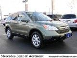 2008 Green Tea Metallic Honda CR-V EX-L 4WD #57354515