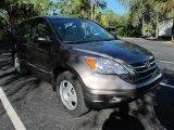 2010 Polished Metal Metallic Honda CR-V LX #57440207