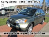 2009 Green Tea Metallic Honda CR-V LX 4WD #57440263