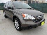 2009 Urban Titanium Metallic Honda CR-V EX #57486655
