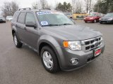 2009 Sterling Grey Metallic Ford Escape XLT V6 4WD #57486236