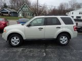 2009 Light Sage Metallic Ford Escape XLT V6 4WD #57486838