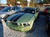 2005 Legend Lime Metallic Ford Mustang V6 Deluxe Coupe #57611056