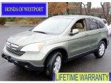 2008 Green Tea Metallic Honda CR-V EX-L 4WD #57610157