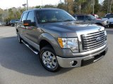 2010 Sterling Grey Metallic Ford F150 XLT SuperCrew #57695939