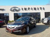 2009 Mayan Bronze Metallic Acura TL 3.5 #57695856