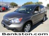 2009 Urban Titanium Metallic Honda CR-V EX-L #57695073