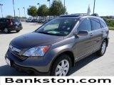 2009 Urban Titanium Metallic Honda CR-V EX-L #57695072