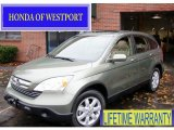 2009 Green Tea Metallic Honda CR-V EX-L 4WD #57695682