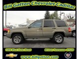 1996 Charcoal Gold Satin Jeep Grand Cherokee Limited 4x4 #57788378