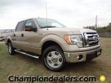 2012 Pale Adobe Metallic Ford F150 XLT SuperCrew #57788064