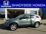 2011 Opal Sage Metallic Honda CR-V EX 4WD #57823019