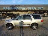 2008 Vapor Silver Metallic Lincoln Navigator Luxury 4x4 #57823185