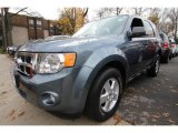 2010 Steel Blue Metallic Ford Escape XLT 4WD #57875281